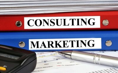 Marketing Consultant vs. Marketing Assistant: Where does SpinFrogs Fall?